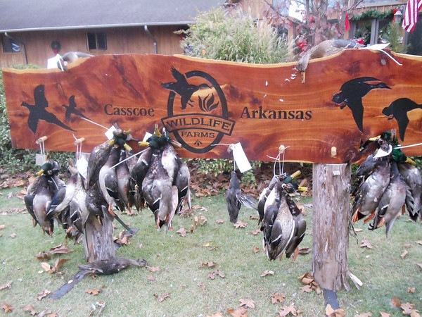 Duck hunting at Wildlife Farms 2010